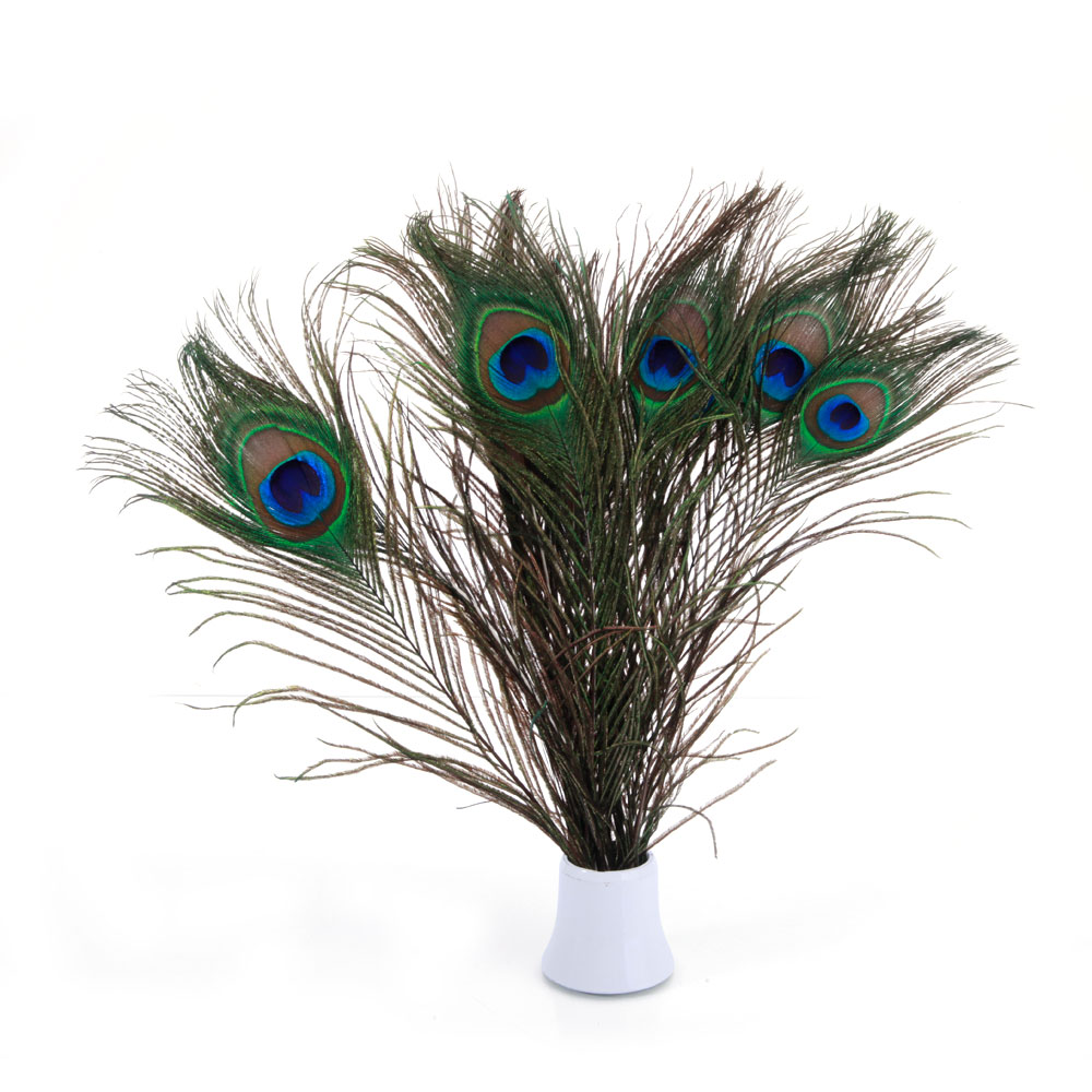 100pcs natural beauty real peacock feather party wedding for Peacock feather decorations home